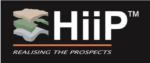 HIIP™ Petroleum Engineering Software Application