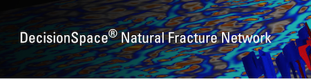 DecisionSpace® Natural Fracture Network Petroleum Engineering Software Application