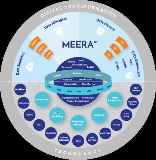 MEERA DX Platform™ Petroleum Engineering Software Application