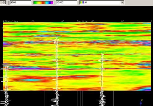Stochastic Seismic Inversion Petroleum Engineering Software Application