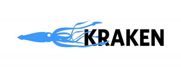 Kraken Petroleum Engineering Software Application