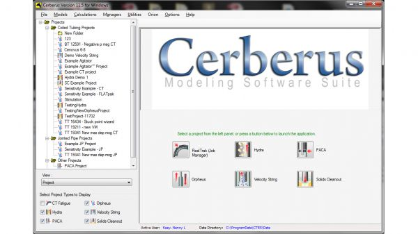 Cerberus™ Petroleum Engineering Software Application