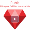 Rubis Petroleum Engineering Software Application