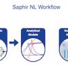 Saphir NL Petroleum Engineering Software Application