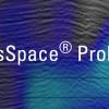 SeisSpace® ProMAX®