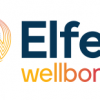 Elfen Wellbore Petroleum Engineering Software Application